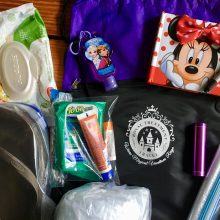 12 Essentials to pack for Disney