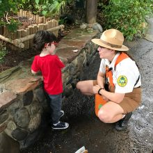 Review: Wilderness Explorers