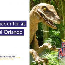 Raptor Encounter at Universal Orlando