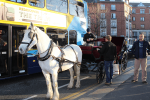 horse carriages first visit to Ireland