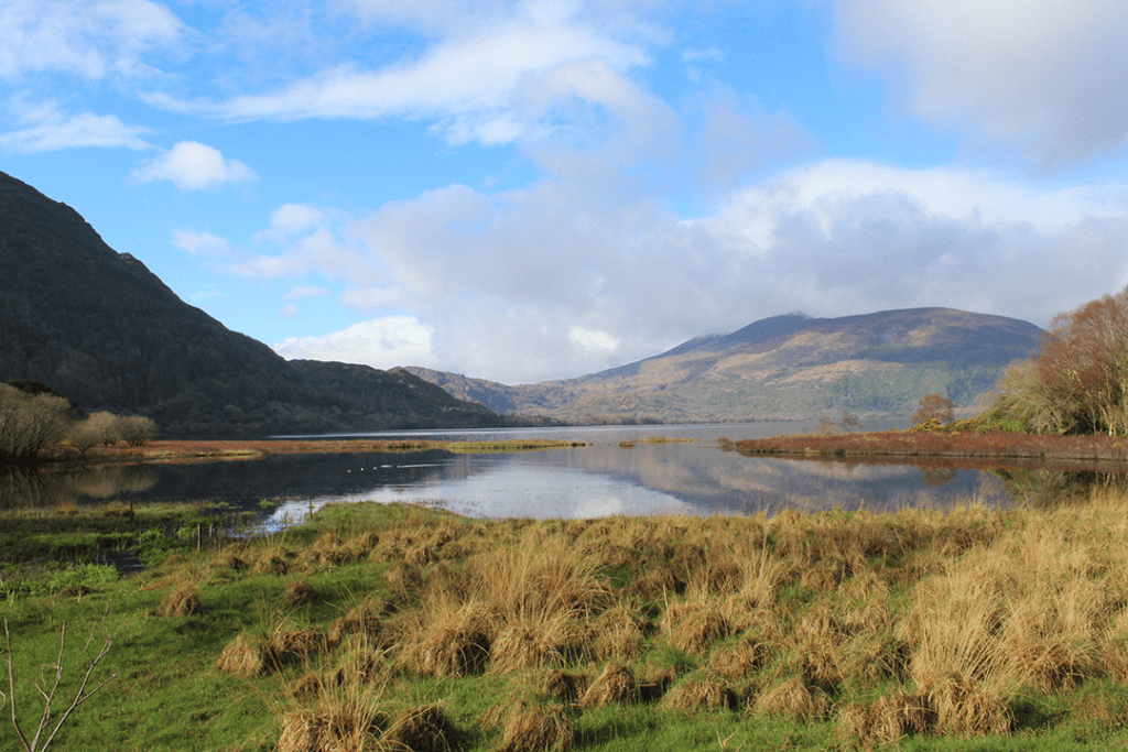 Carrage ride from Muckross House to Torc Waterfall