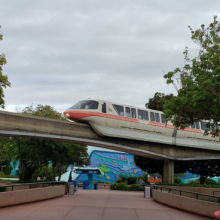 2 Great Ways to get Low Crowds at Disney World