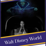 5 Tips for a Solo Trip to Walt Disney World